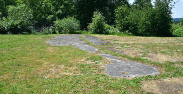 The foundation of the theater that once sat 750 people, one of the few remaining physical pieces of Vanport. Photo by Pete Shaw.